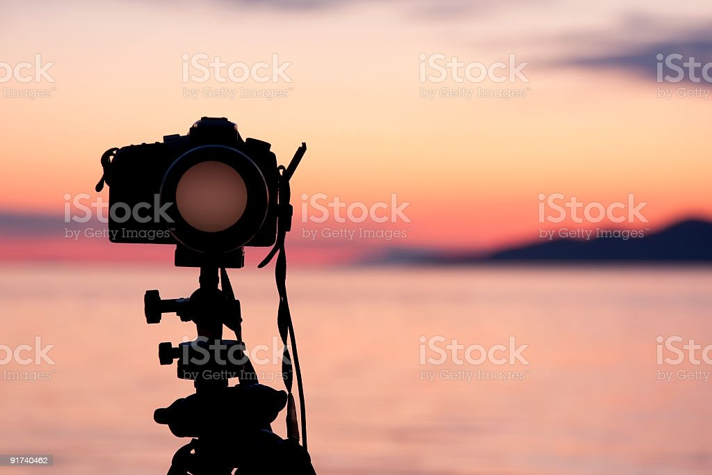Capture the moment royalty-free stock photo