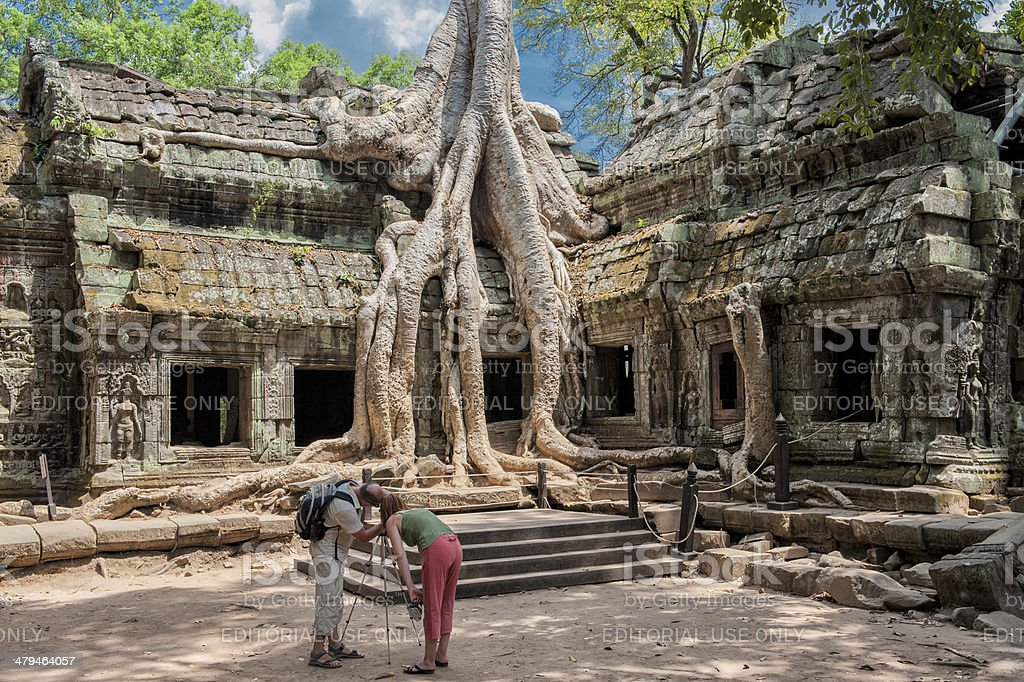 Capturing giant roots at Ta Prohm stock photo