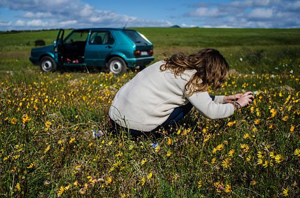 Capturing Nature stock photo