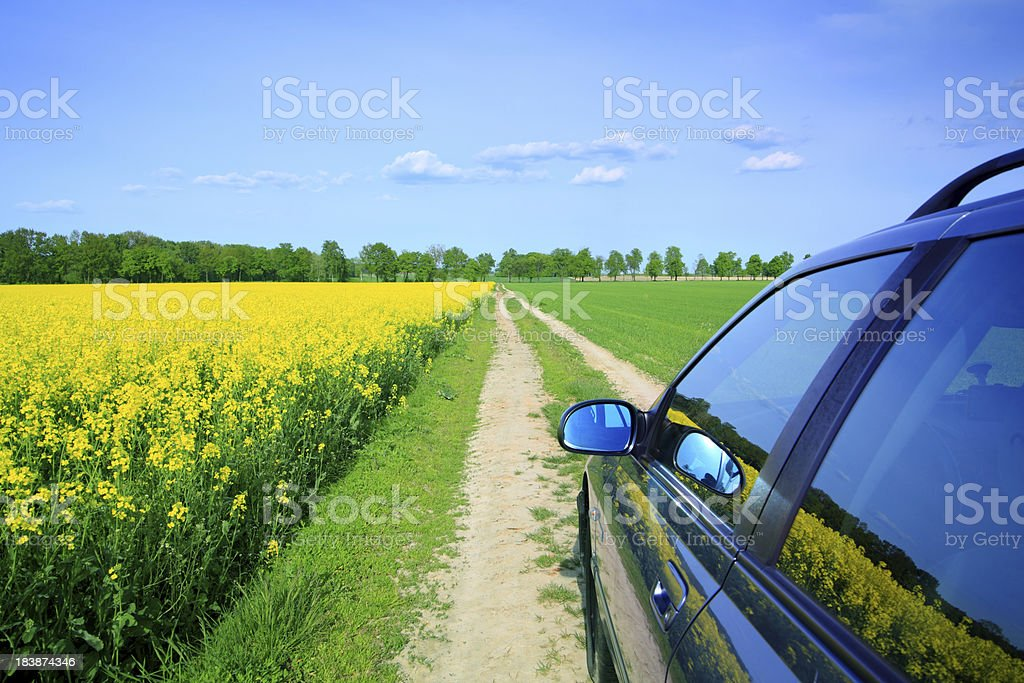 Car among the fields - country landscape Car among the fields - country landscape Car Stock Photo