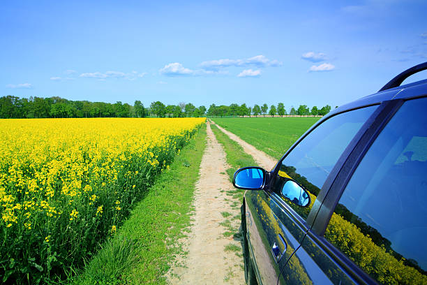 Car among the fields - country landscape stock photo