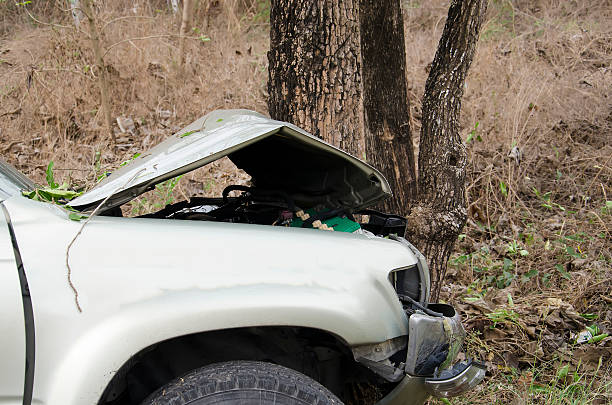 car crash tree stock photo