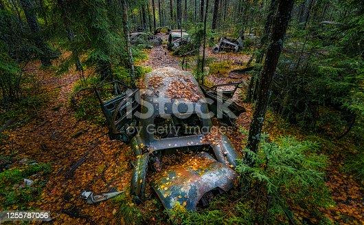 istock Car graveyard 1255787056
