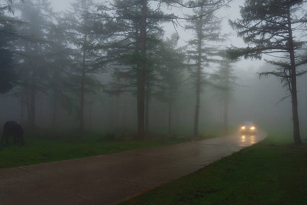 car in country road with fog and low visibility - mist donker auto stockfoto's en -beelden