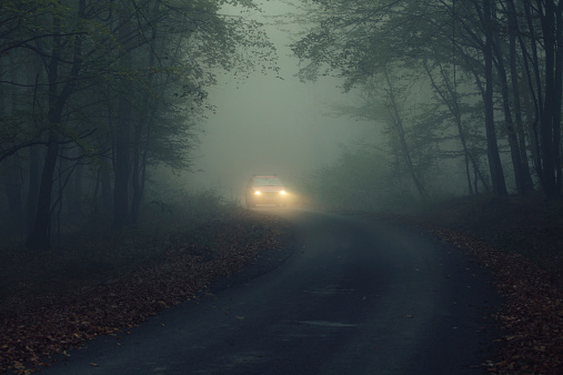 car in fogy night