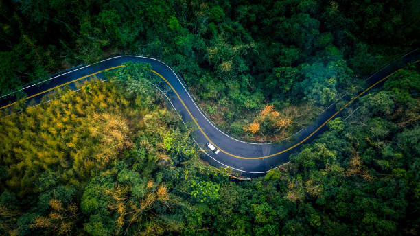 Car in rural road in deep rain forest with green tree forest, Aerial view car in the forest. stock photo