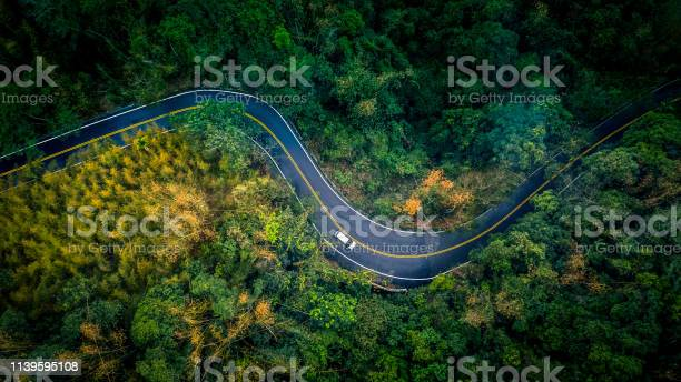 Photo of Car in rural road in deep rain forest with green tree forest, Aerial view car in the forest.
