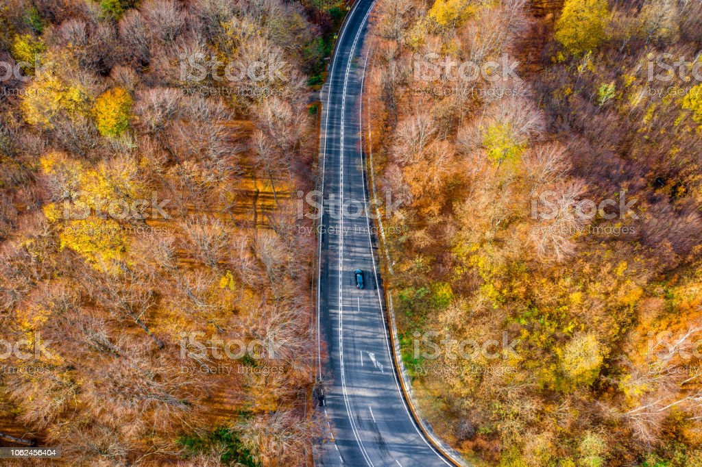 Car on a scenic road in the middle of a forest in fall season stock photo