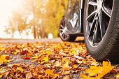 istock Car on asphalt road on autumnr day at park 1283692155