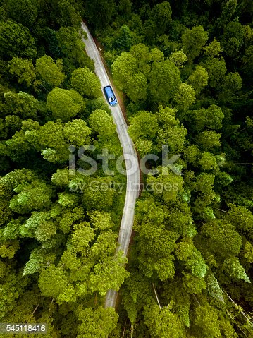 istock Car on road through a pine forest 545118416