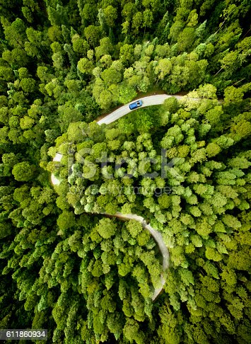 istock Car on road through a pine forest 611860934