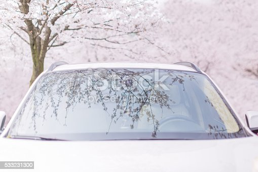 825525754 istock photo car parking under the cherry trees 533231300