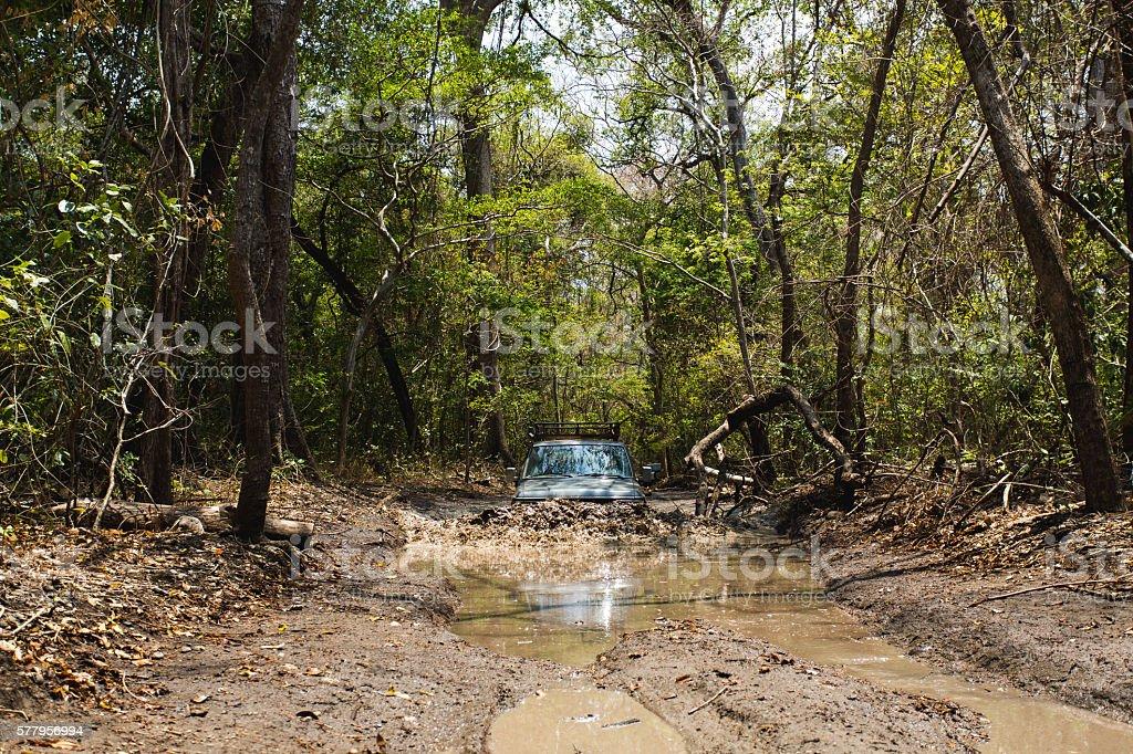 Car Plowing Through Water stock photo