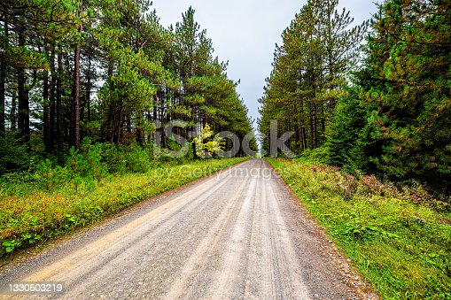 istock Car point of view wide angle road through spruce pine tree forest lining dirt path in Dolly Sods, West Virginia autumn fall season 1330603219