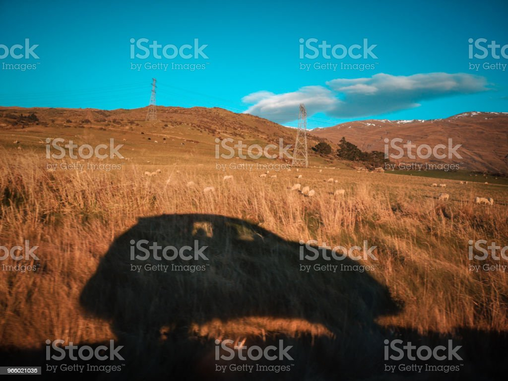 Car shadow on the country road in the morning - Royalty-free Autumn Stock Photo