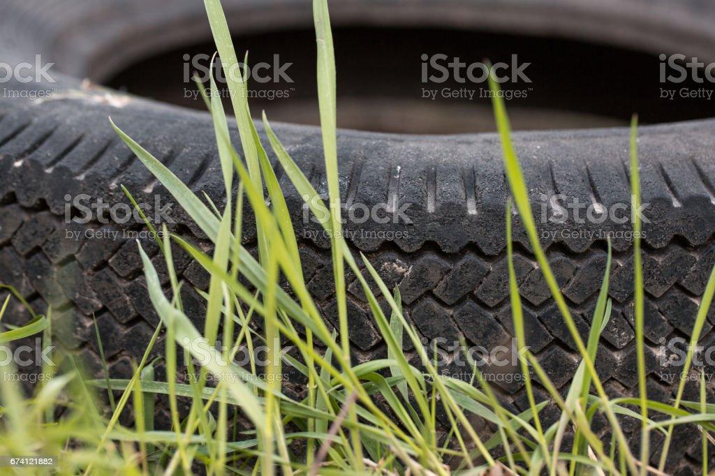 綠色草坪上的汽車輪胎 免版稅 stock photo