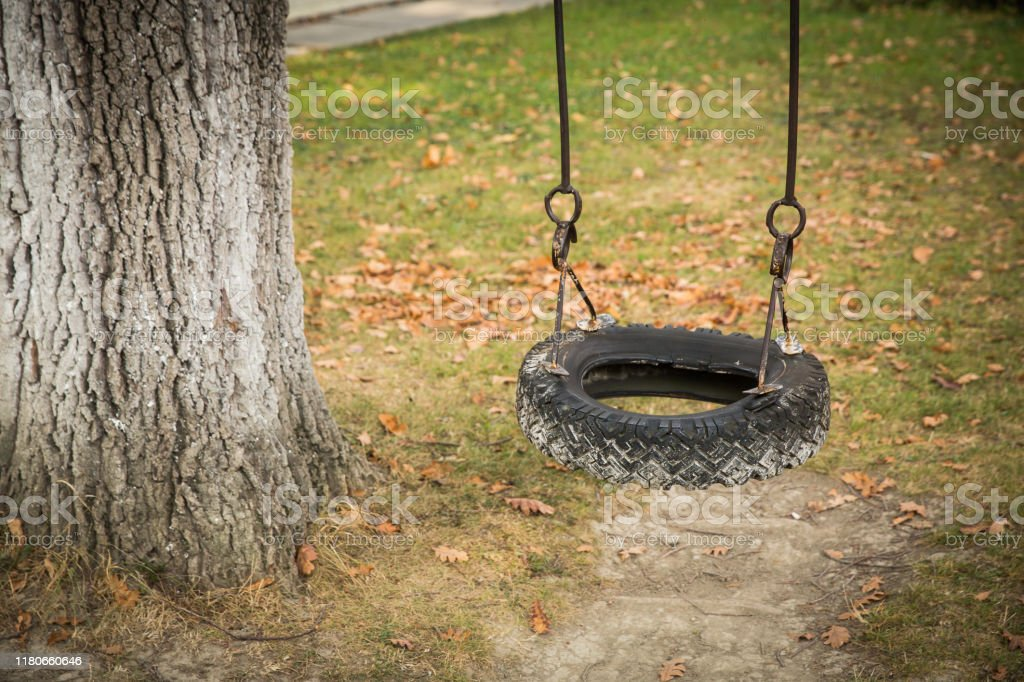 Car Tire Used As A Swing On A Tree In The Garden Stock Photo Download Image Now Istock