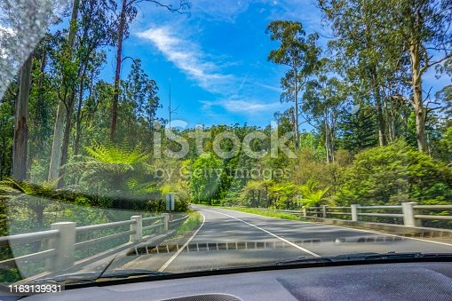 1042711480 istock photo A car tour through the wild of Australia 1163139931