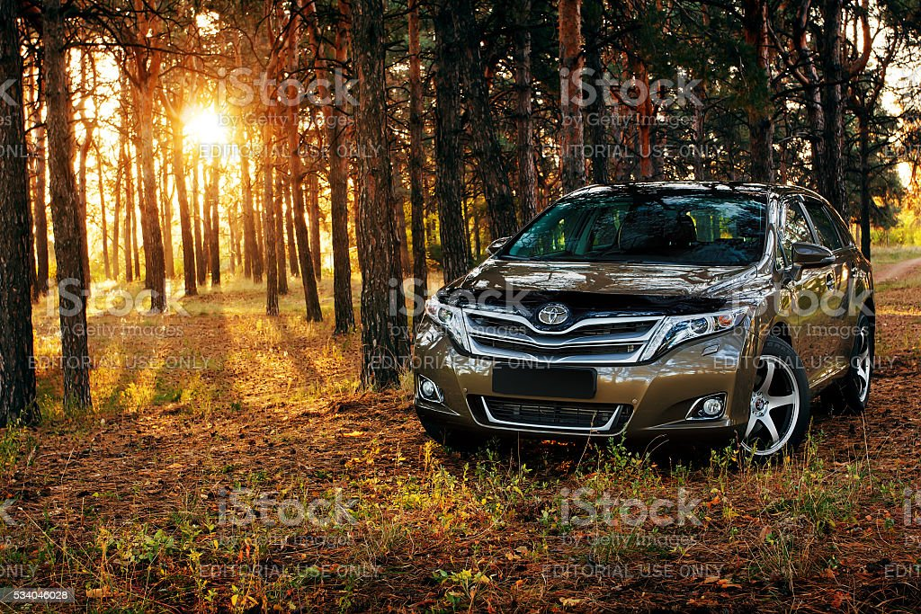 Car Toyota Venza in the forest stock photo