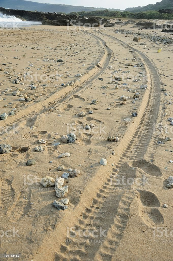 Car Tracks in the Sand royalty-free stock photo