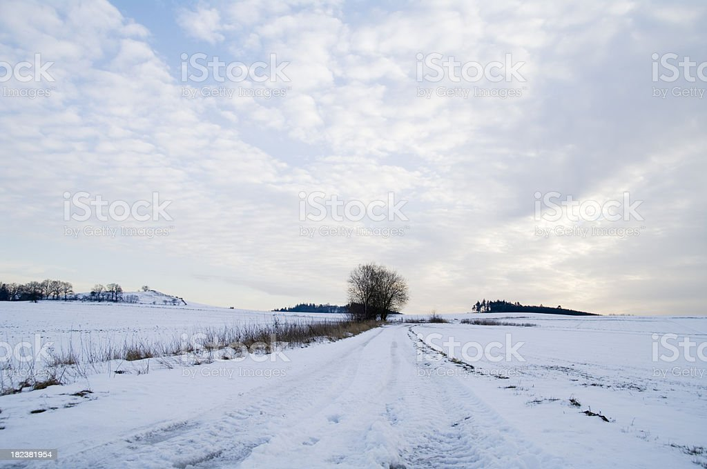 Car Tracks in the Snow foto