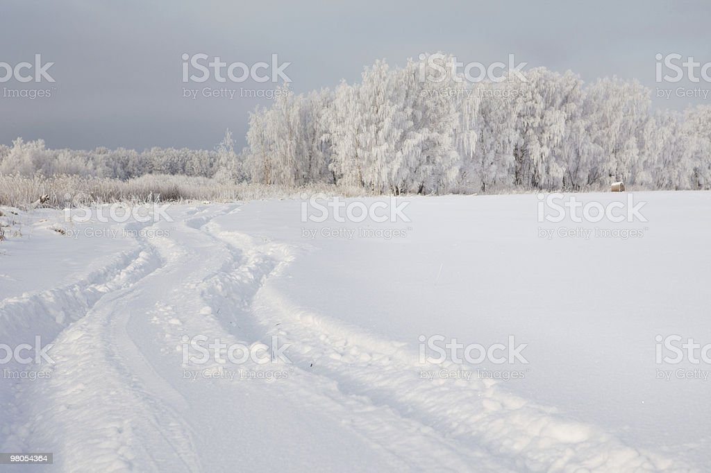 Car trail in fresh deep snow royalty-free stock photo