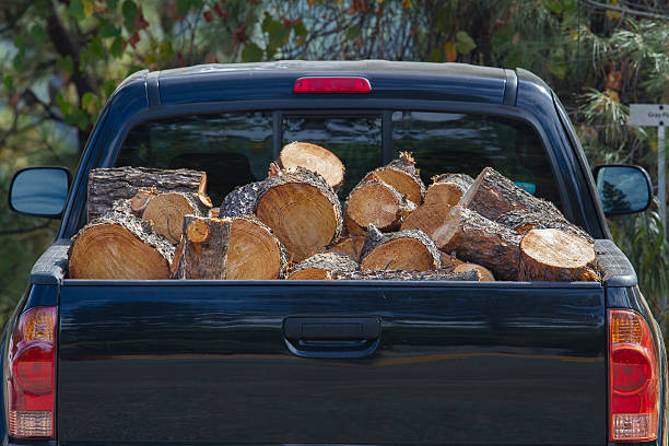 Car Trunk Loaded with Firewood stock photo