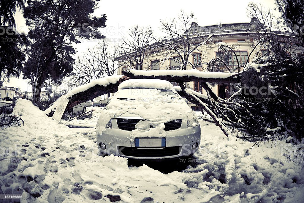 Car under fallen tree after heavy snow stock photo