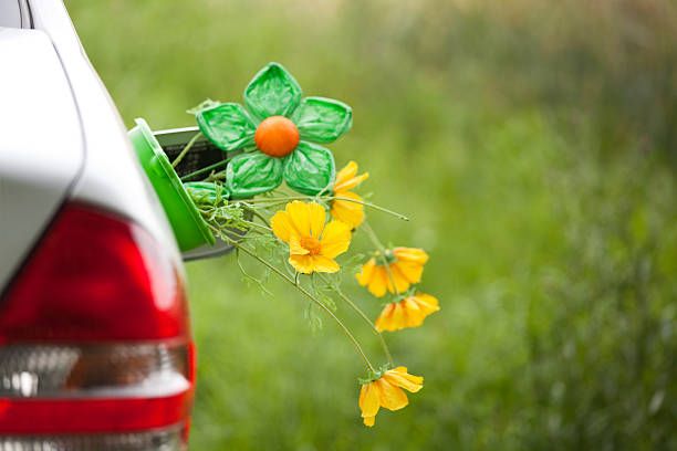 Car with flowers in the tank lid - Renewable energy Renewable energy biodiesel stock pictures, royalty-free photos & images