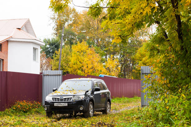 subaru car with yellow autumn leaves on its hood in the countryside - tree logo stock photos and pictures