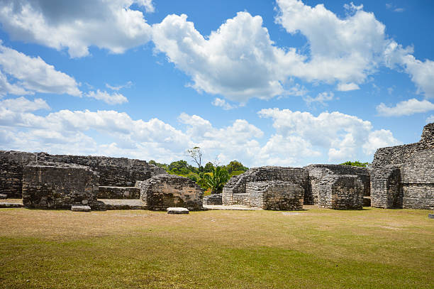 Caracol archeological site of Mayan civilization in Western Belize Some of many structures at the Caracol archeological site of Mayan civilization in Western Belize maya mountains stock pictures, royalty-free photos & images