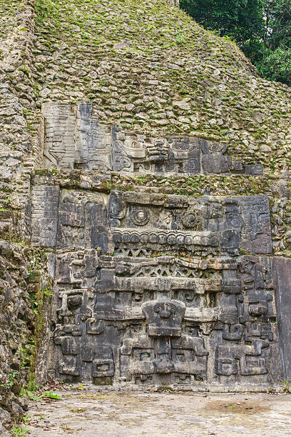 Caracol Carving in limestone. Caracol ruins. Cayo District. Belize. maya mountains stock pictures, royalty-free photos & images