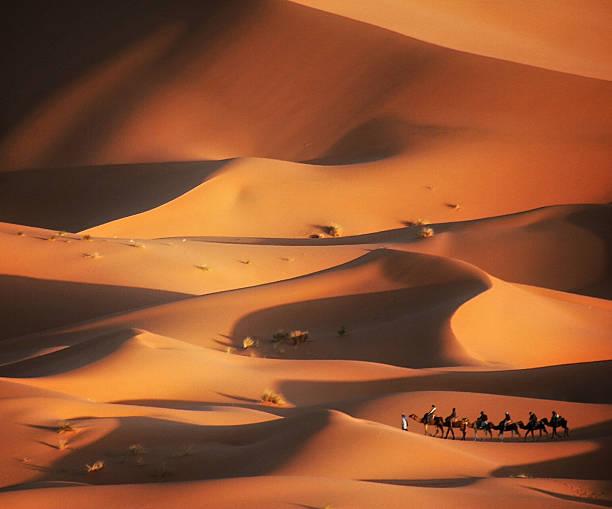 ausflug in die wüste, merzouga, marokko - sahara stock-fotos und bilder