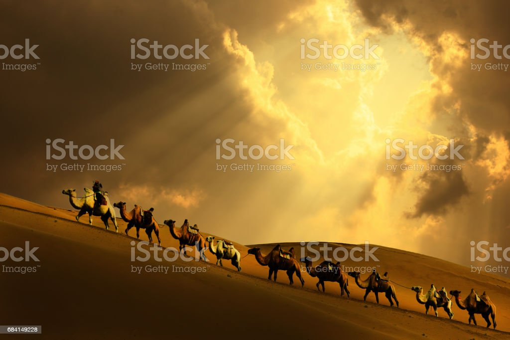 Caravan in the desert royalty-free stock photo