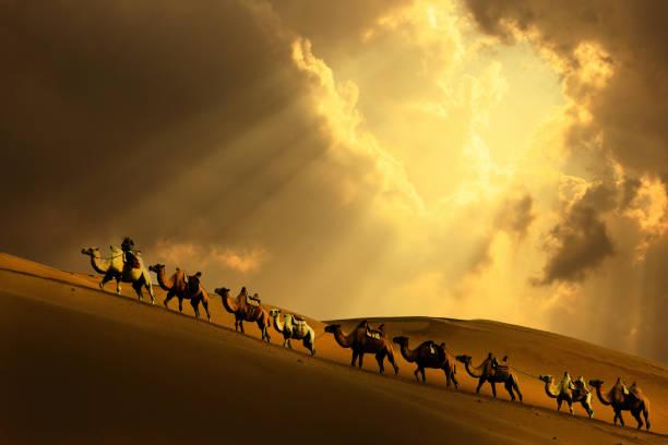 caravana en el desierto - camello fotografías e imágenes de stock