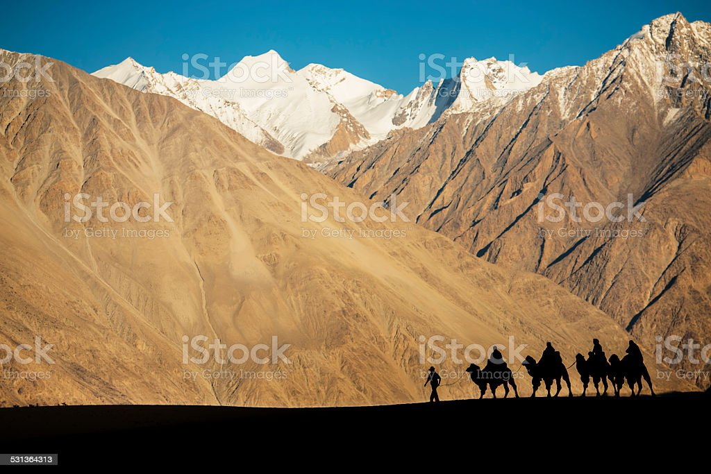 caravan travellers riding camels Nubra Valley Ladakh stock photo