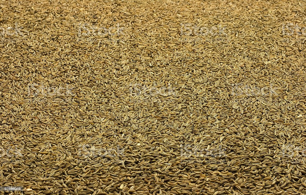 Caraway seeds background royaltyfri bildbanksbilder
