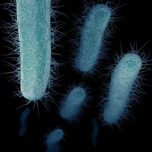 carbapenem-resistant enterobacteriaceae (cre) swimming - resistance bacteria bildbanksfoton och bilder