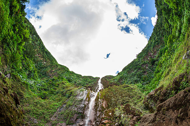 Carbet Falls In Guadeloupe stock photo
