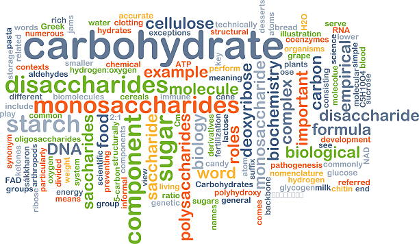 carbohydrate wordcloud concept illustration Background text pattern concept wordcloud illustration of carbohydrate carbohydrate biological molecule stock pictures, royalty-free photos & images