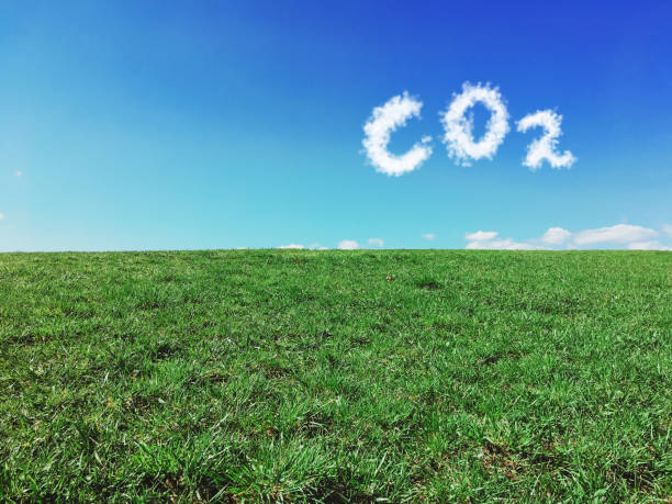 Carbon dioxide emissions control and pollution concept. Carbon dioxide emissions control and pollution concept. zero stock pictures, royalty-free photos & images