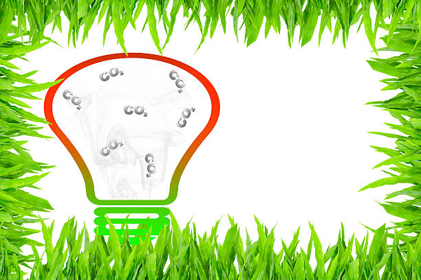 Carbon dioxide in clear light bulb surrounded with green grass Carbon dioxide in clear light bulb surrounded with green grass, antipollution concept antipollution stock pictures, royalty-free photos & images