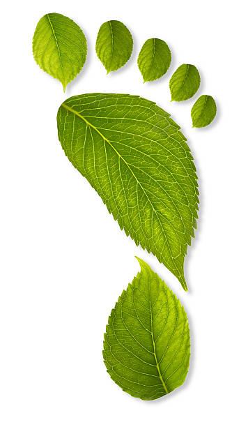 carbon footprint konzept xxxl - was ist co2 stock-fotos und bilder