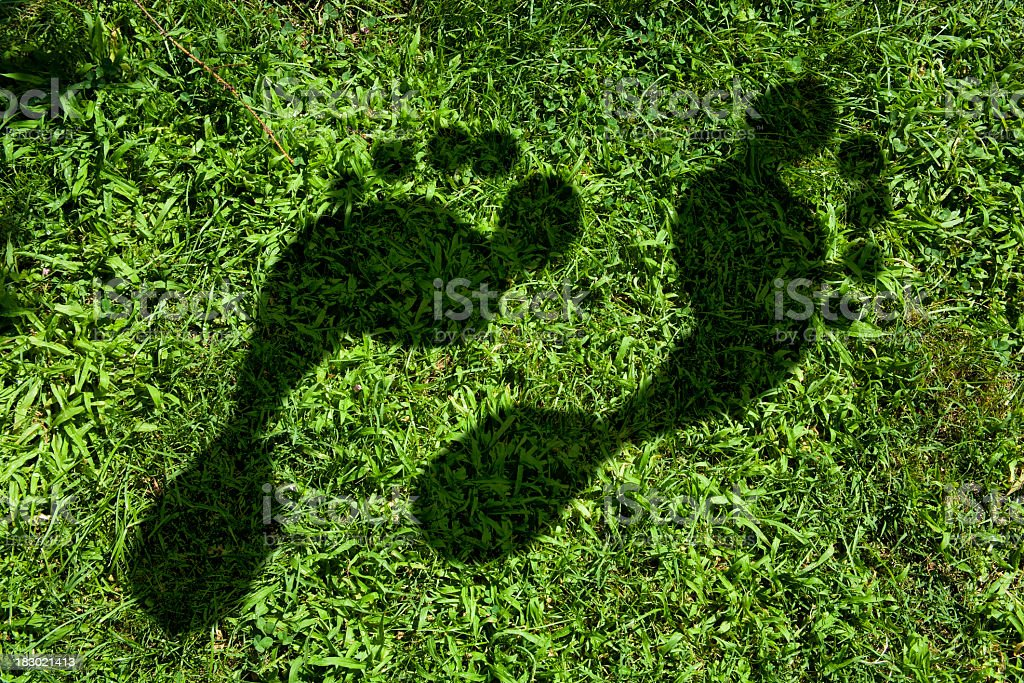Carbon footprint imprinted in the grass stock photo