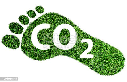 istock carbon footprint symbol, barefoot footprint made of lush green grass with text CO2 1203960441