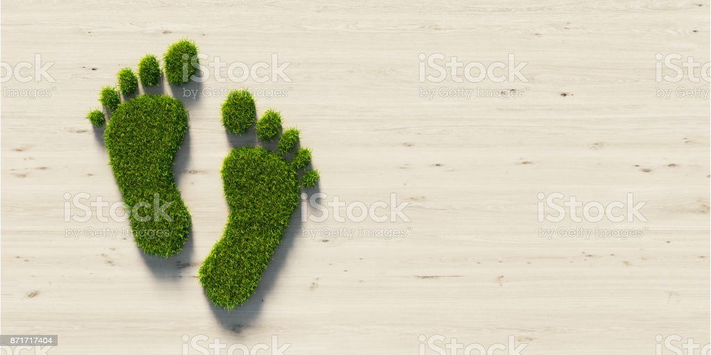 Carbon Footprint Symbol Made Of Green Grass : Green Energy Concept stock photo