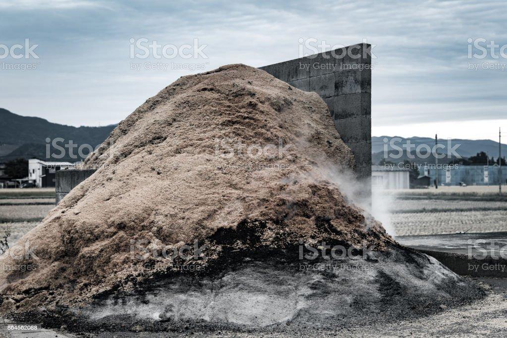 Carbonized chaff. stock photo