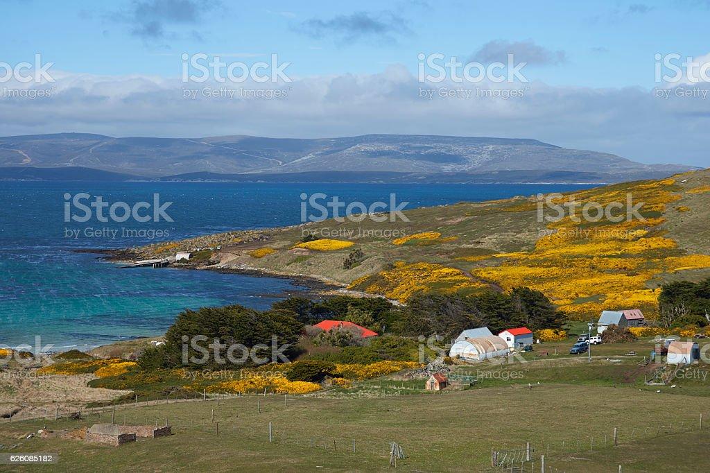Carcass Island Settlement stock photo