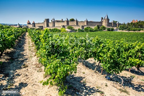 Carcassone, France - July 17, 2014: Vineyards next to the cite of Carcassonne, France.