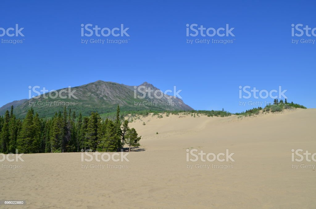 Carcross desert landscape stock photo